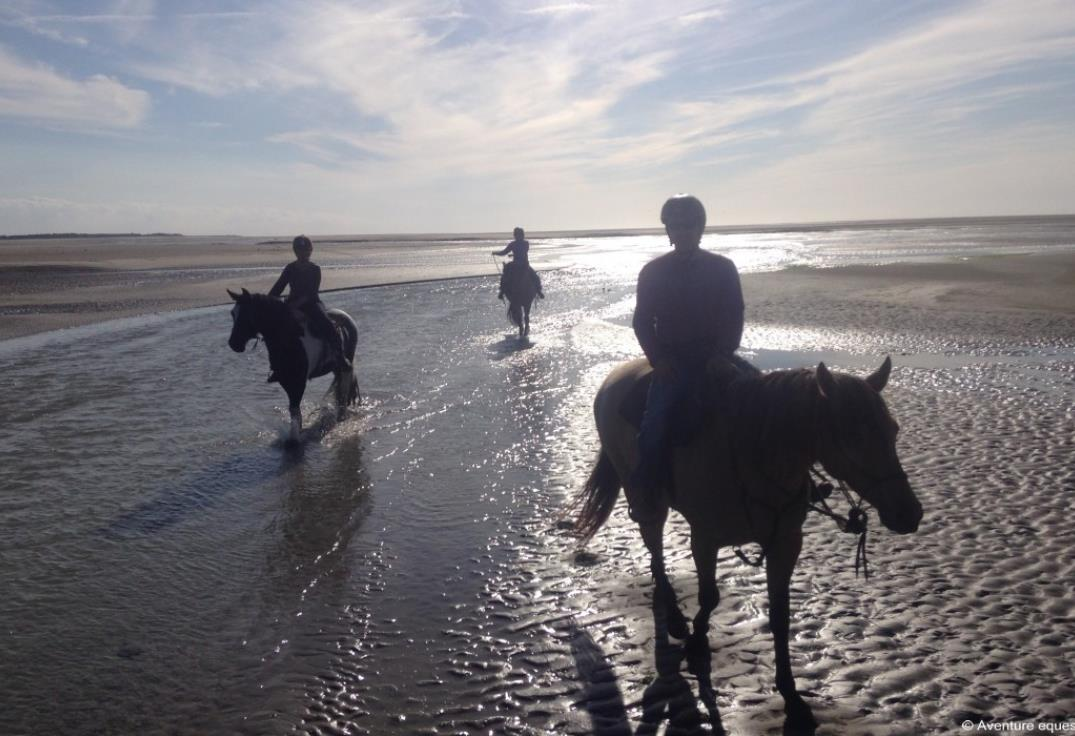 aventure_equestre_somme_picardie