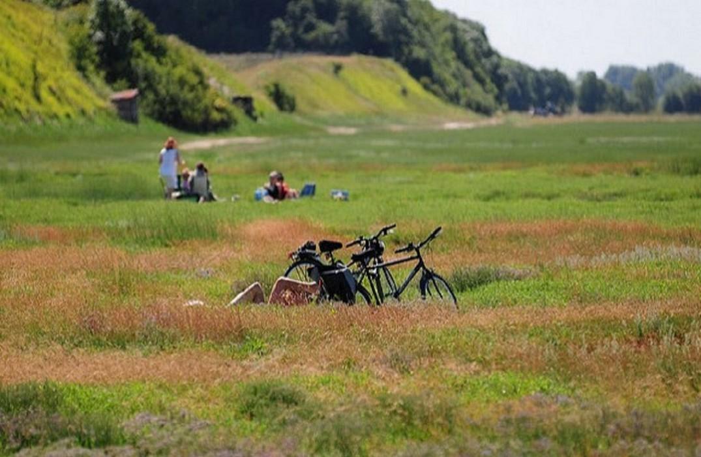 Location de vélos - parc du Marquenterre