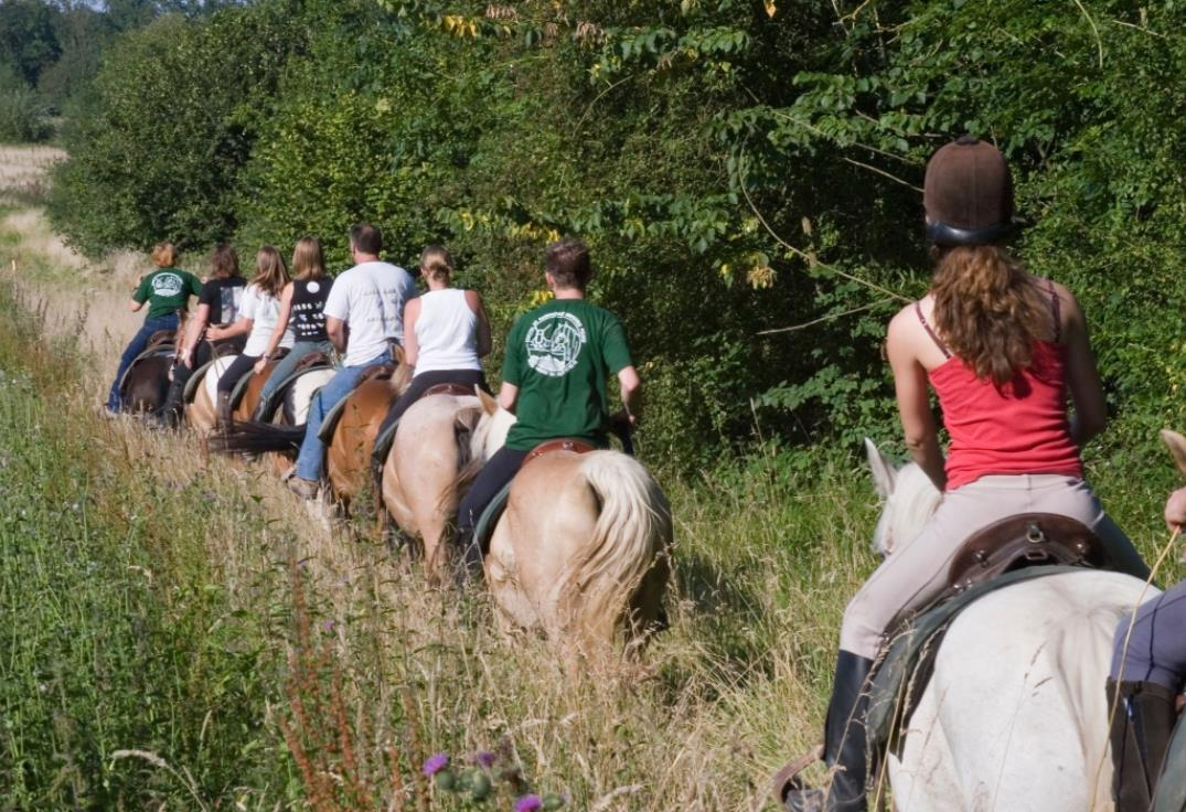 balade_chevaux_naours_somme_picardie