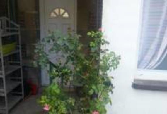le-jardinet-7-karine
