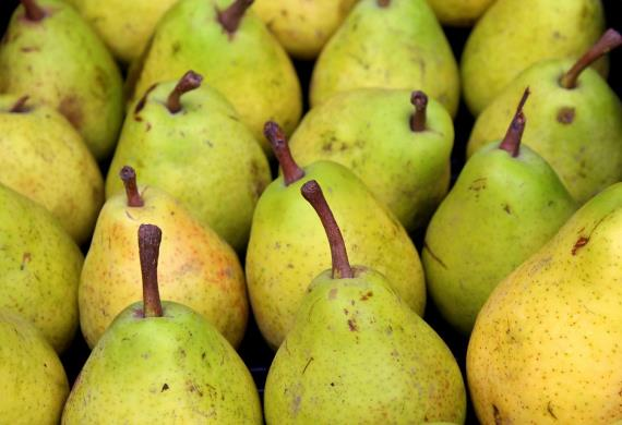 pears-3784442-960-720